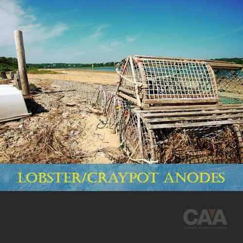 Lobster/Craypot